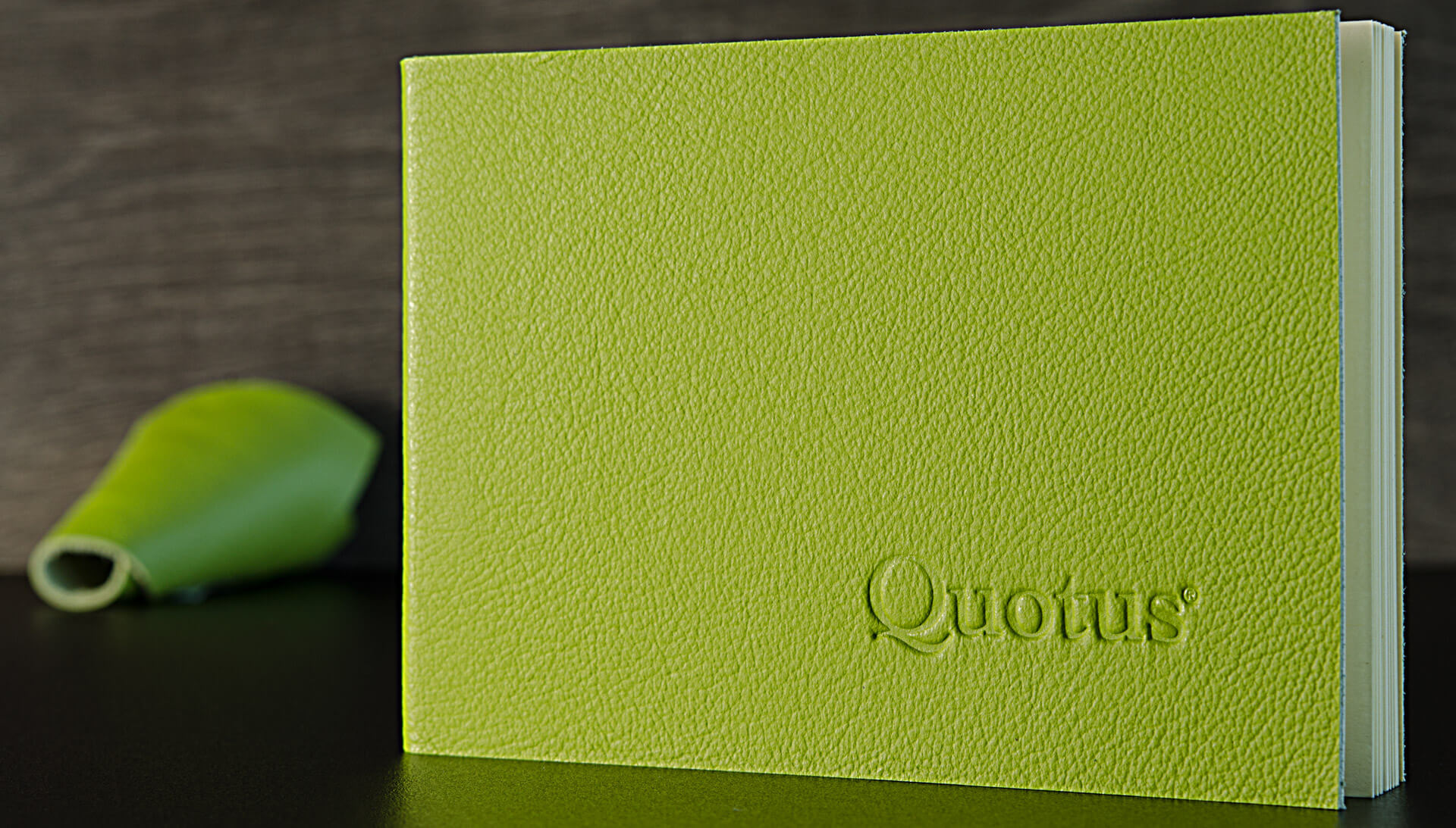 Cartoleria in pelle Quotus - Mini Block Notes a righe Pavra, colore verde